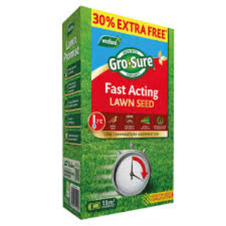 Gro-Sure Fast Acting  Lawn Seed 10m2