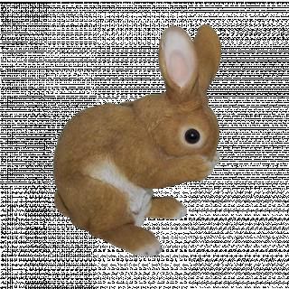RL Standing Rabbits D