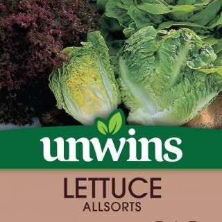 Lettuce Allsorts