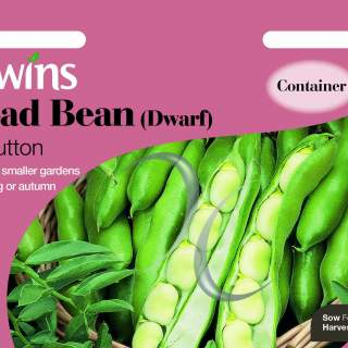 Broad Bean (Dwarf) The Sutton