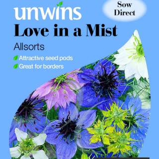 Love In A Mist Allsorts