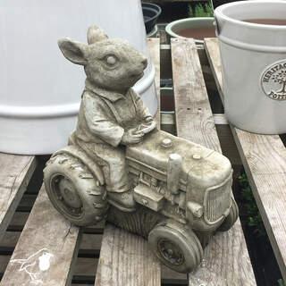 Rabbit on Tractor