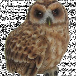 GF Owl Small F