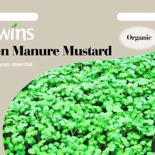 Green Manure Mustard