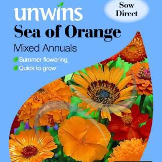 Unwins Sea of Orange Mixed Annuals