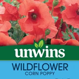Wildflower Corn Poppy