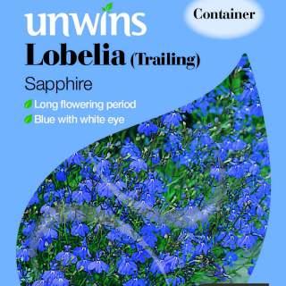 Lobelia Trailing Sapphire