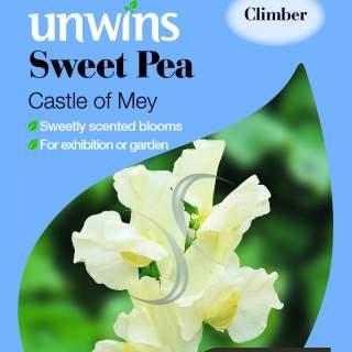 Sweet Pea Castle Of Mey