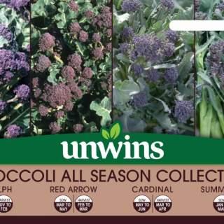 Broccoli All Season Collection