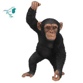 RL Hanging Chimpanzee B