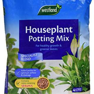 Houseplant Potting Mix (Enriched with Seramis) 8L