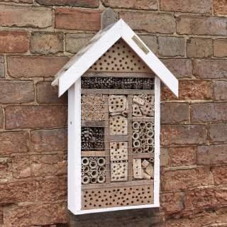 Guest House Bug House
