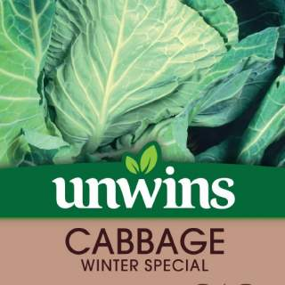 Cabbage (Spring Greens) Winter Green