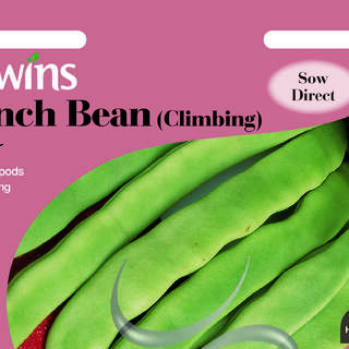 French Bean (Climbing) Hunter