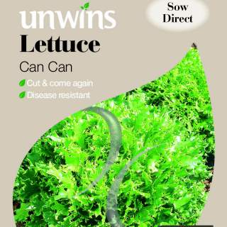 Lettuce Can Can