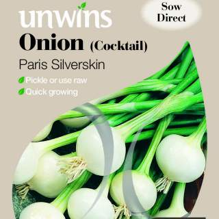 Onion Cocktail Paris Silverskin