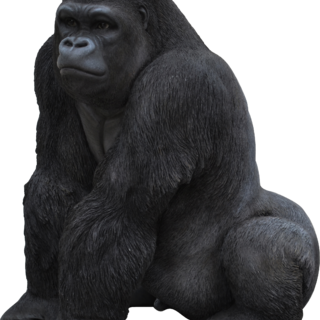 Real Life Gorilla A