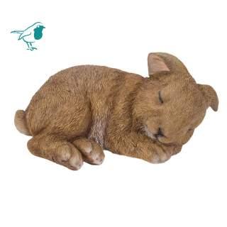 RL Sleeping Baby Rabbit E