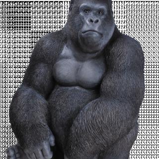 RL Sitting Gorilla D x 1