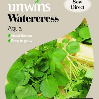 Watercress Aqua