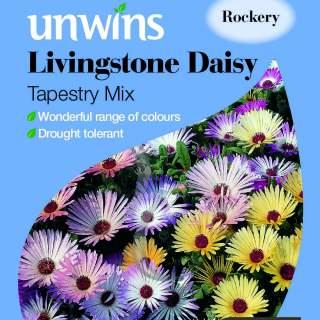Livingstone Daisy Tapestry Mix