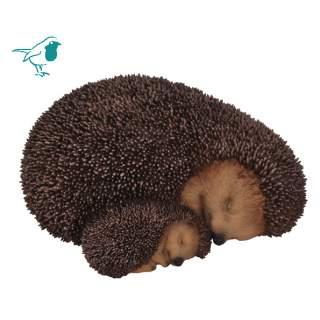 RL Mother Baby Hedgehog B