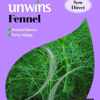Herb Fennel