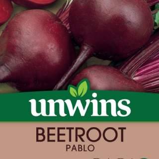 Beetroot Baby Beetroot Pablo