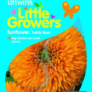 Little Growers Sunflower Teddy Bear