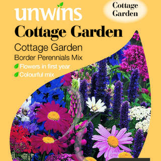 Cottage Garden Border Perennials Mix