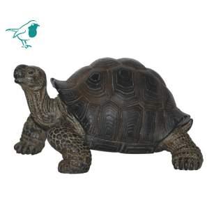 Real Life Giant Tortoise B