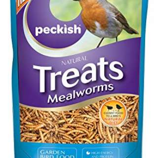 PK Mealworm 500g
