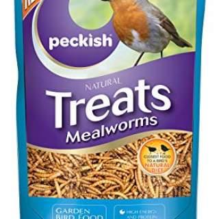 PK Mealworm 500g