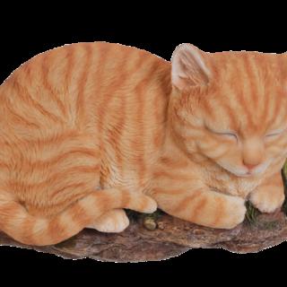 RL Sleeping Cat GINGER B