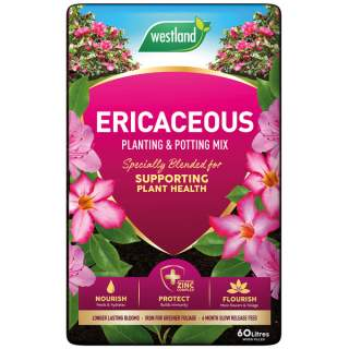 Ericaceous Potting & Planting Mix 60L