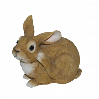 RL Sitting Rabbits D
