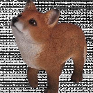 RL Standing Fox Cub D