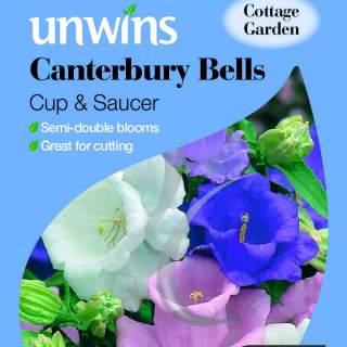 Canterbury Bells Cup & Saucer