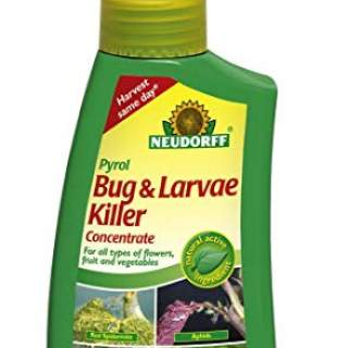ORGANIC TOTAL BUG KILL 250ml
