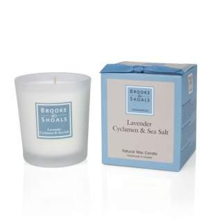 Regular Candle - Lavender Cyclamen & Sea Salt