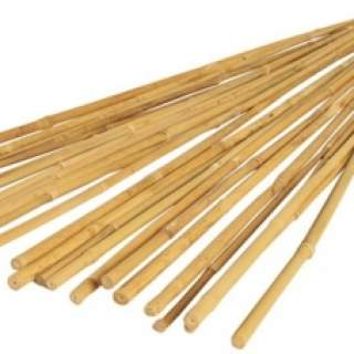 BAMBOO CANES 4ft  (10s)