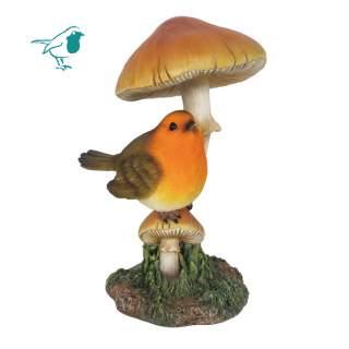 Robin on Toadstool F