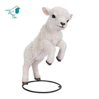 Jumping Lamb B
