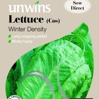 Lettuce (Cos) Winter Density