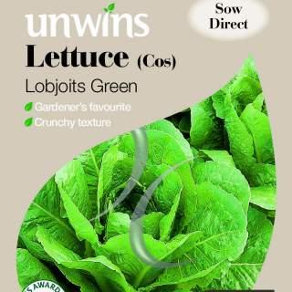 Lettuce (Cos) Lobjoits Green