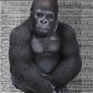 Real Life Gorilla B x 1