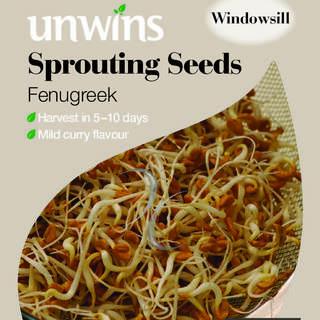 Sprouting Seeds Fenugreek