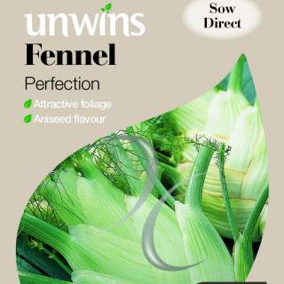 Fennel Perfection