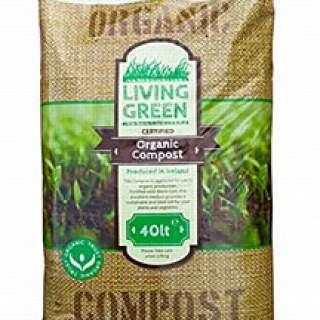 Organic living green