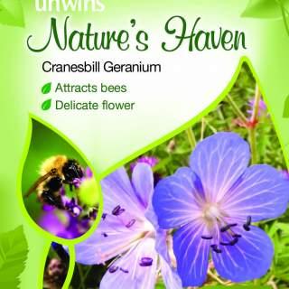 NH Cranesbill Geranium